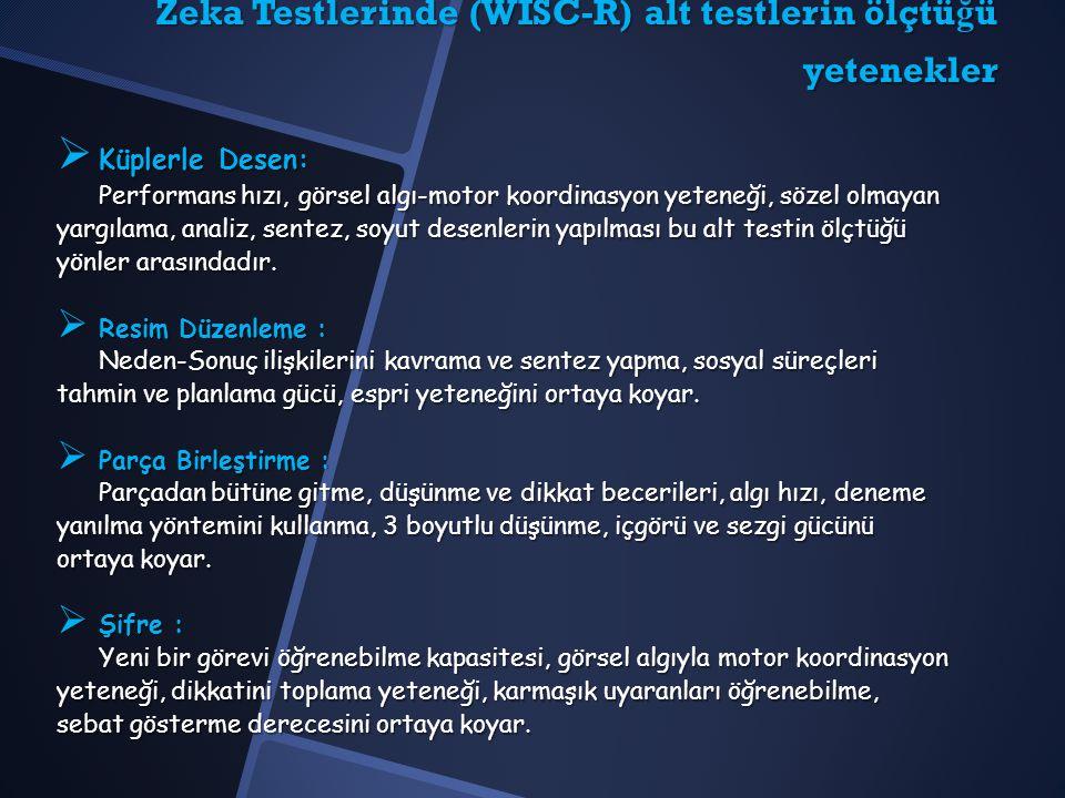 Zeka Testlerinde (WISC-R) alt testlerin ölçtüğü yetenekler