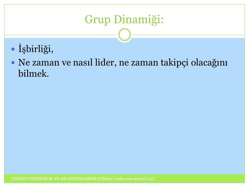 Grup Dinamiği: İşbirliği,
