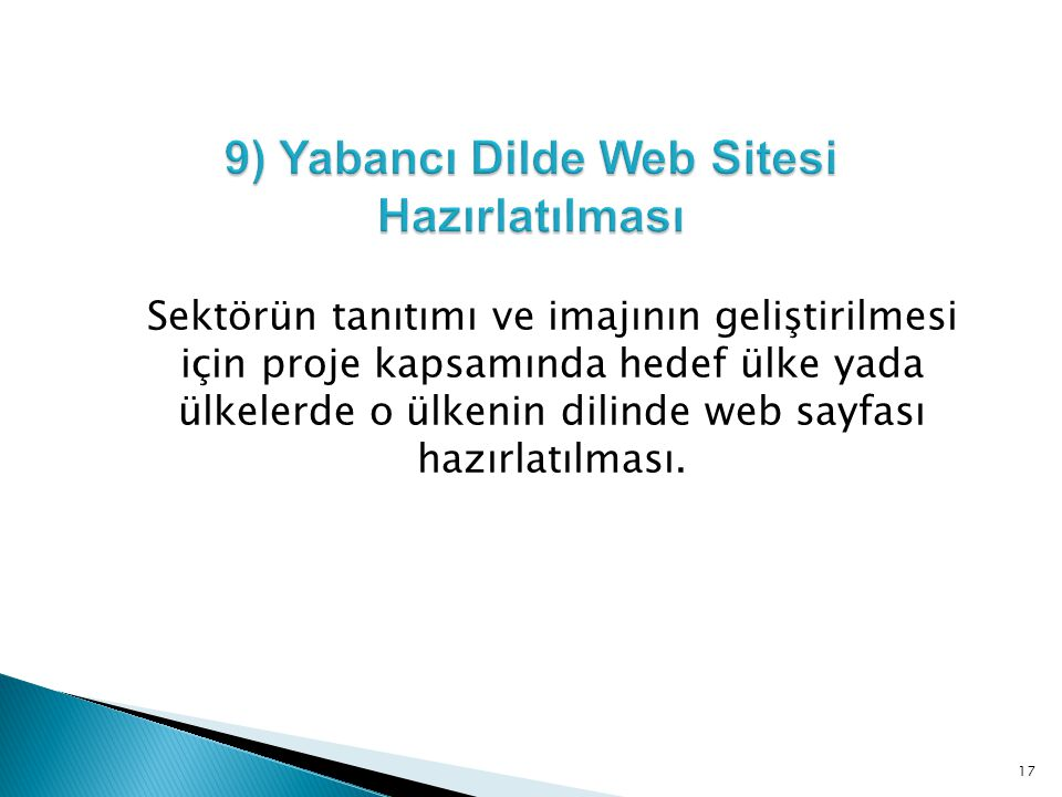 9) Yabancı Dilde Web Sitesi Hazırlatılması