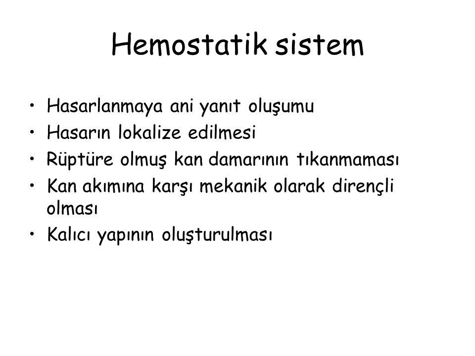 Hemostatik sistem Hasarlanmaya ani yanıt oluşumu