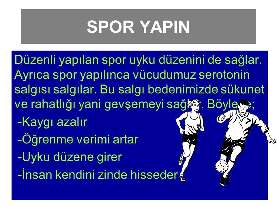 SPOR YAPIN