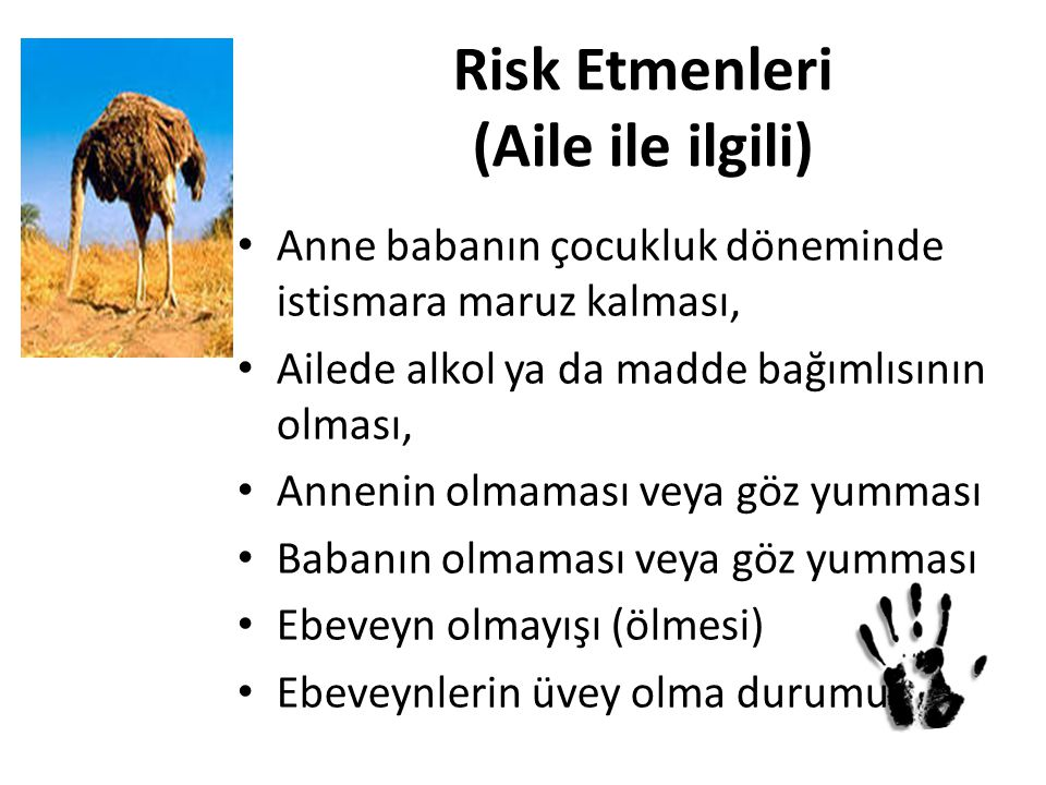 Risk Etmenleri (Aile ile ilgili)
