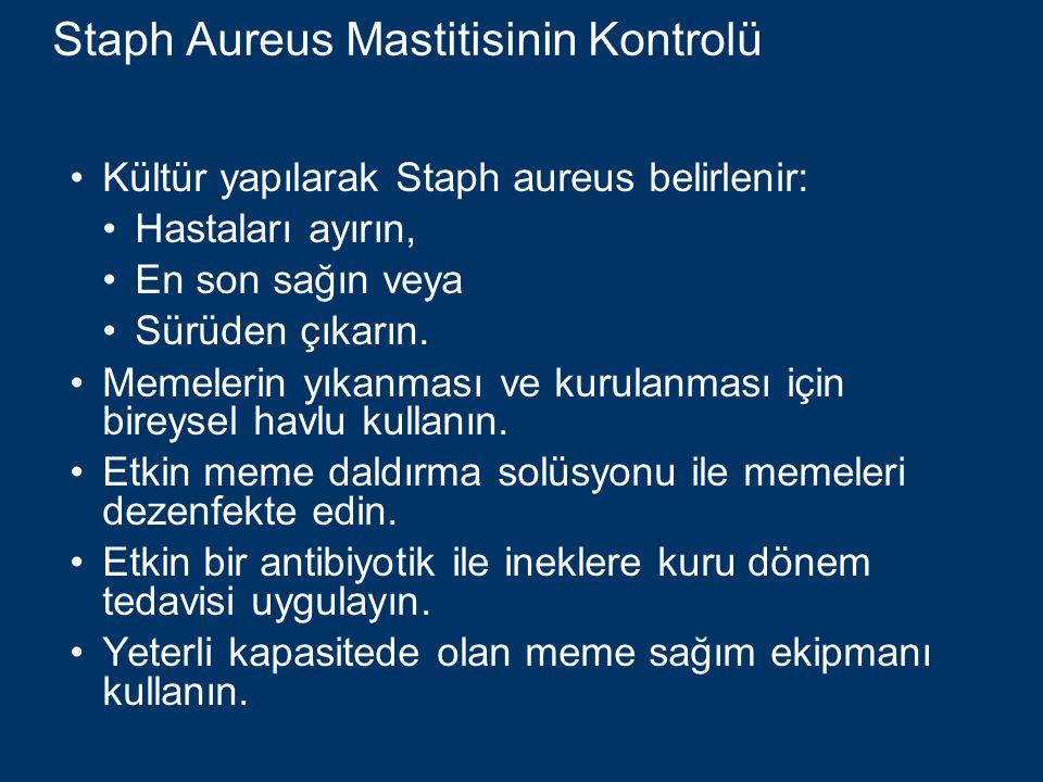 Staph Aureus Mastitisinin Kontrolü