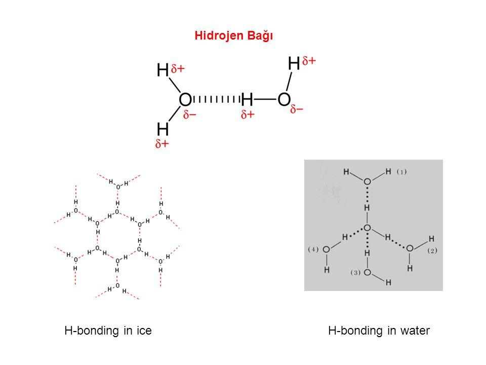 Hidrojen Bağı H-bonding in ice H-bonding in water