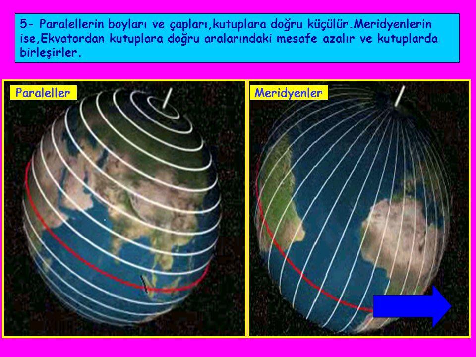 5- Paralellerin boyları ve çapları,kutuplara doğru küçülür
