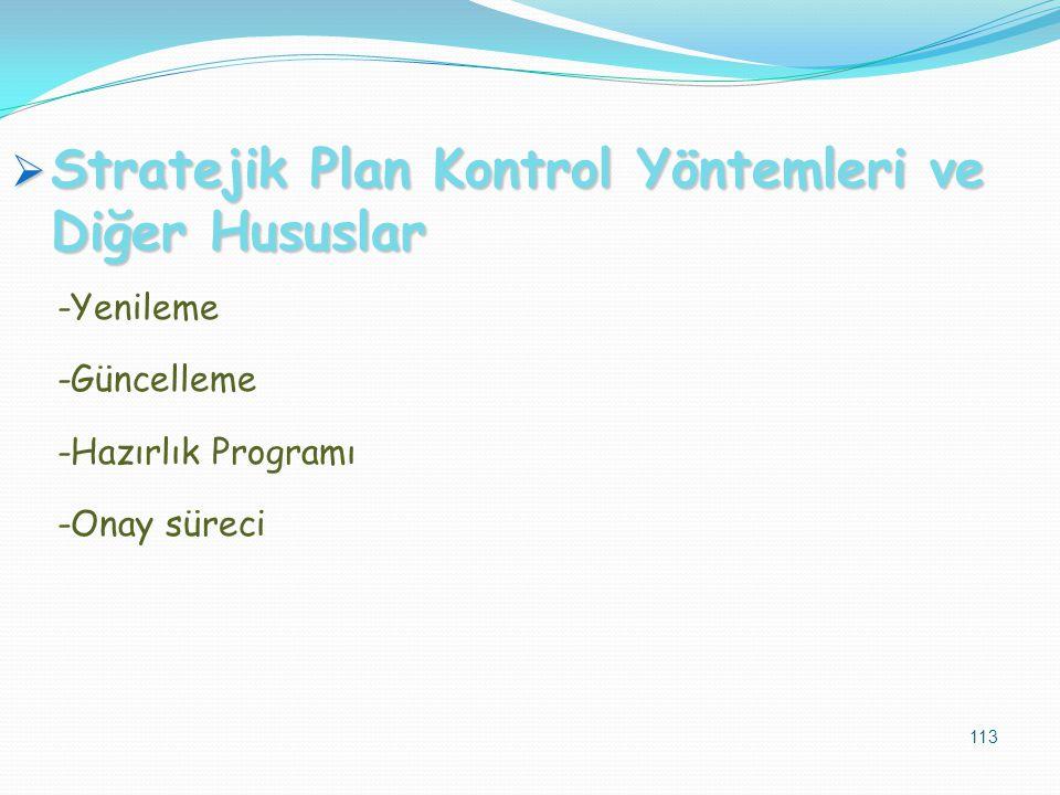 Stratejik Plan Kontrol Yöntemleri ve Diğer Hususlar