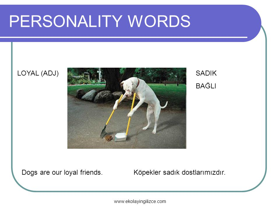 PERSONALITY WORDS LOYAL (ADJ) SADIK BAĞLI