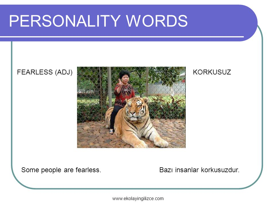 PERSONALITY WORDS FEARLESS (ADJ) KORKUSUZ