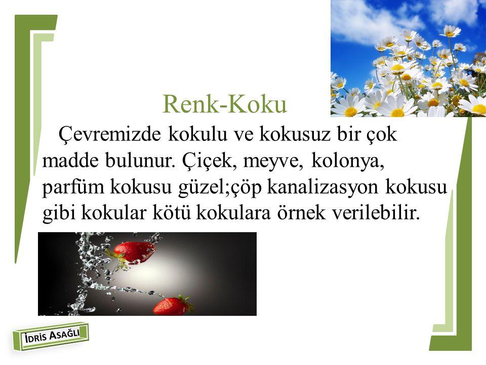 Renk-Koku