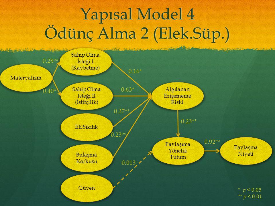 Yapısal Model 4 Ödünç Alma 2 (Elek.Süp.)