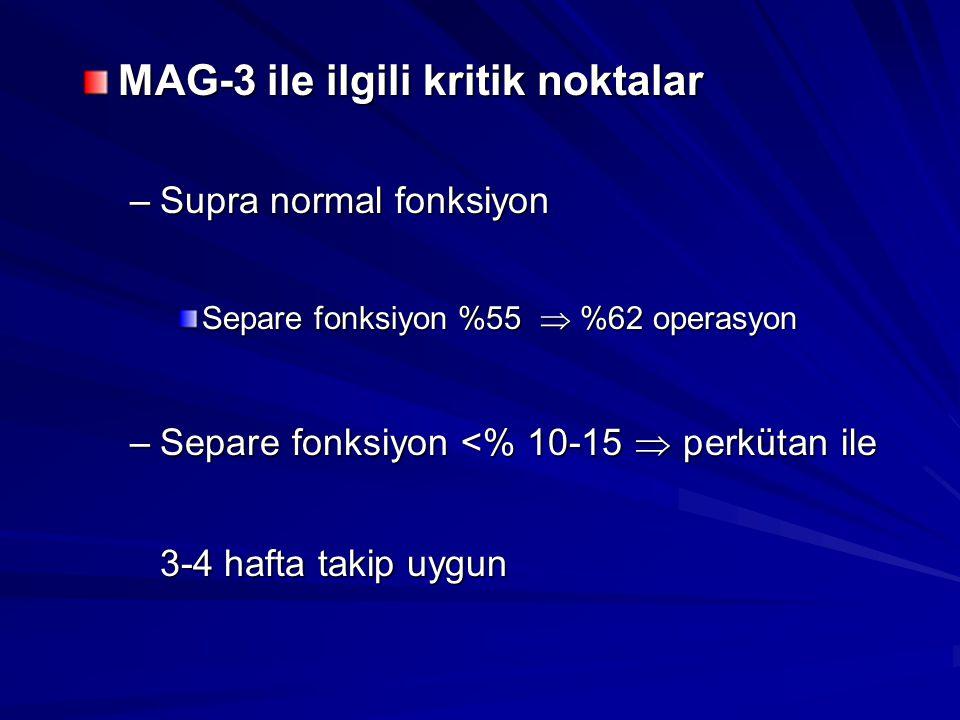 MAG-3 ile ilgili kritik noktalar