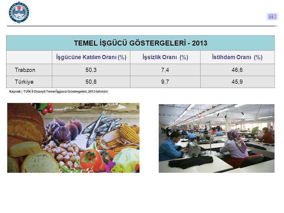 TEMEL İŞGÜCÜ GÖSTERGELERİ - 2013 İşgücüne Katılım Oranı (%)