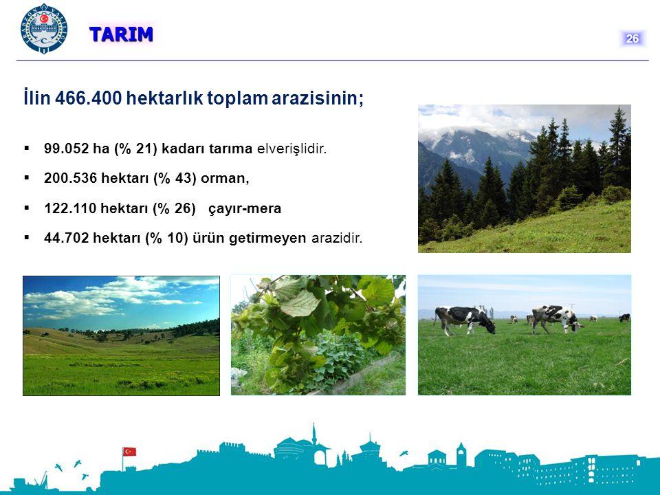 İlin 466.400 hektarlık toplam arazisinin;