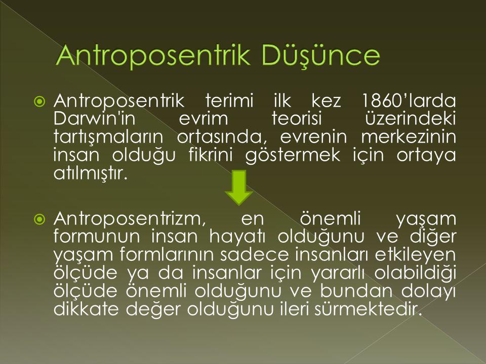 Antroposentrik Düşünce
