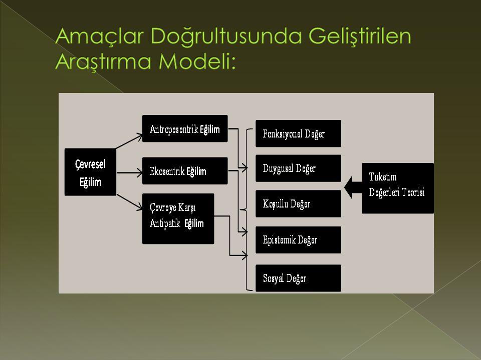 Amaçlar Doğrultusunda Geliştirilen Araştırma Modeli: