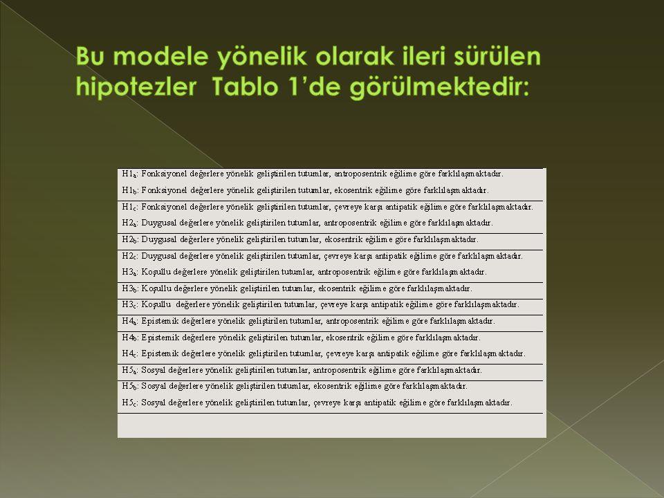 Bu modele yönelik olarak ileri sürülen hipotezler Tablo 1'de görülmektedir: