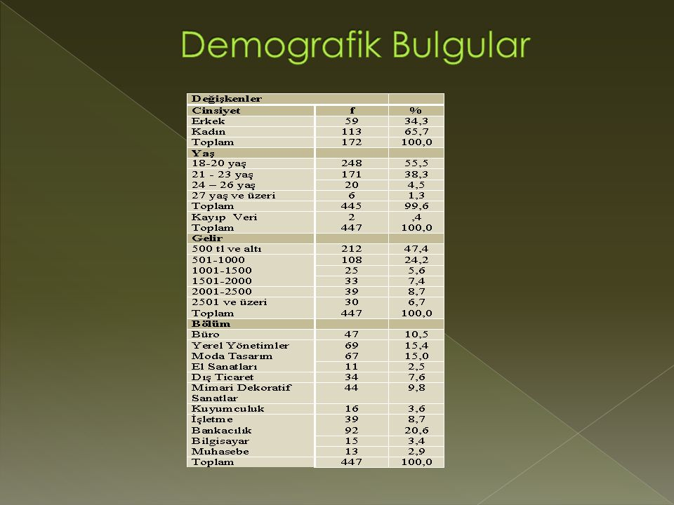 Demografik Bulgular