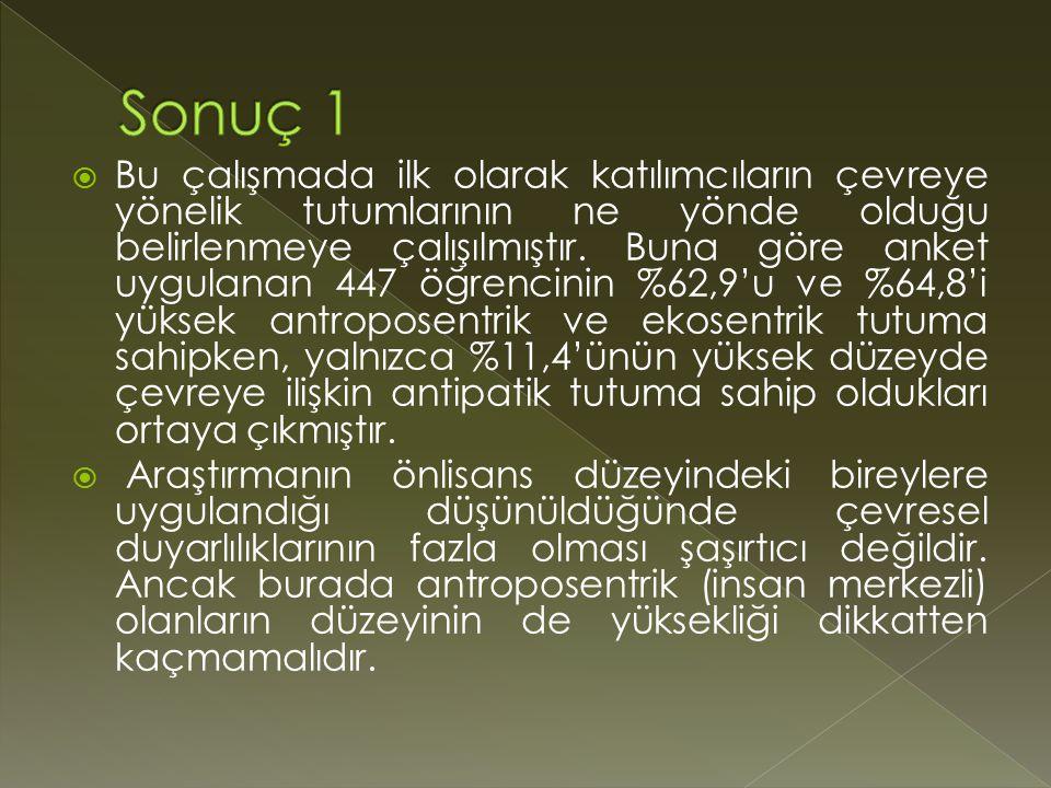 Sonuç 1