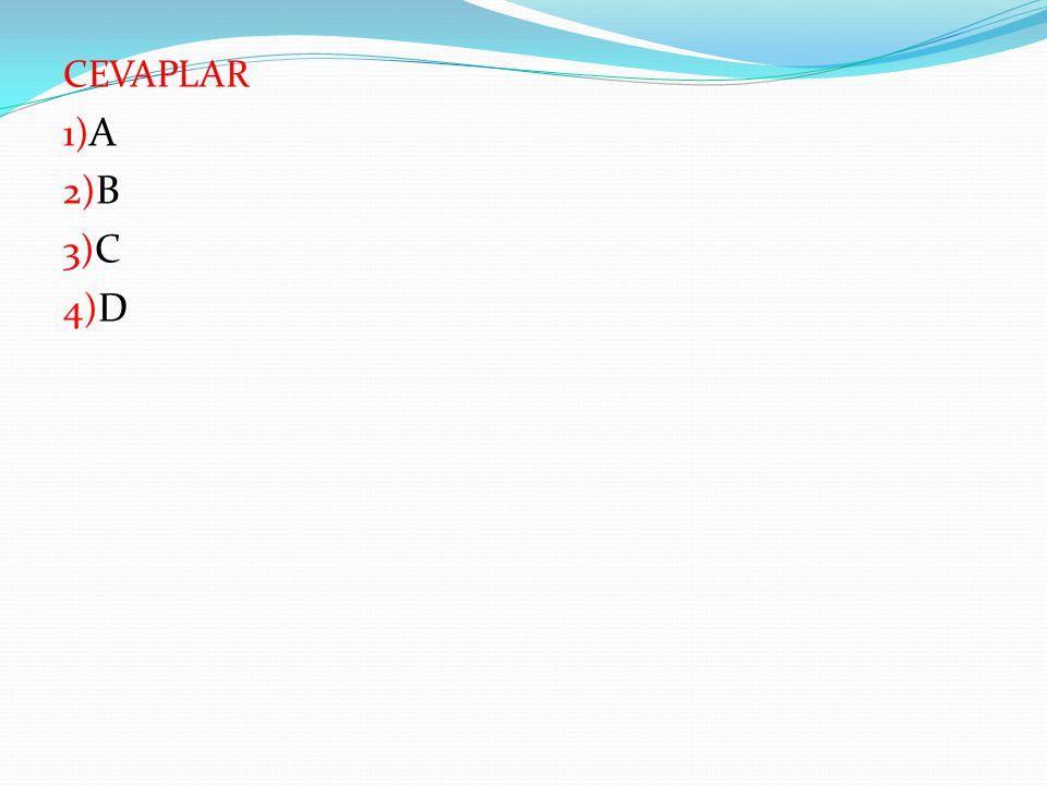 CEVAPLAR 1)A 2)B 3)C 4)D