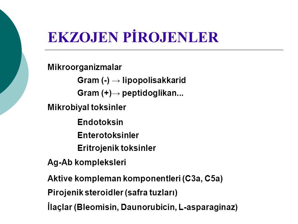 EKZOJEN PİROJENLER Mikroorganizmalar Gram (-) → lipopolisakkarid