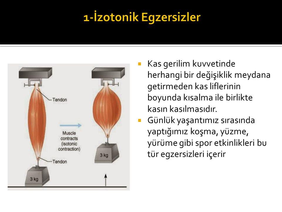 1-İzotonik Egzersizler