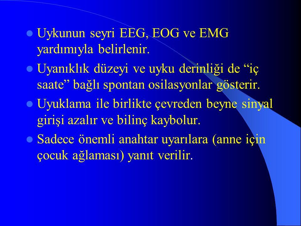Uykunun seyri EEG, EOG ve EMG yardımıyla belirlenir.