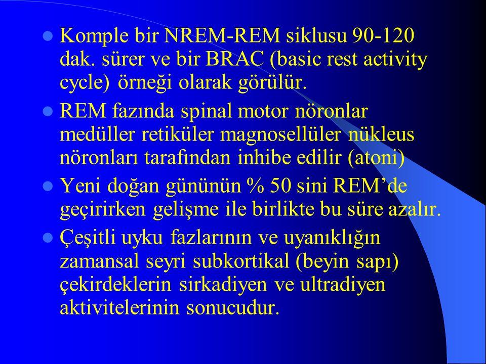 Komple bir NREM-REM siklusu 90-120 dak