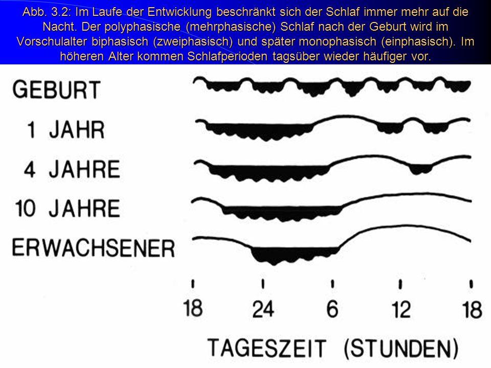Abb. 3.2: Im Laufe der Entwicklung beschränkt sich der Schlaf immer mehr auf die Nacht.