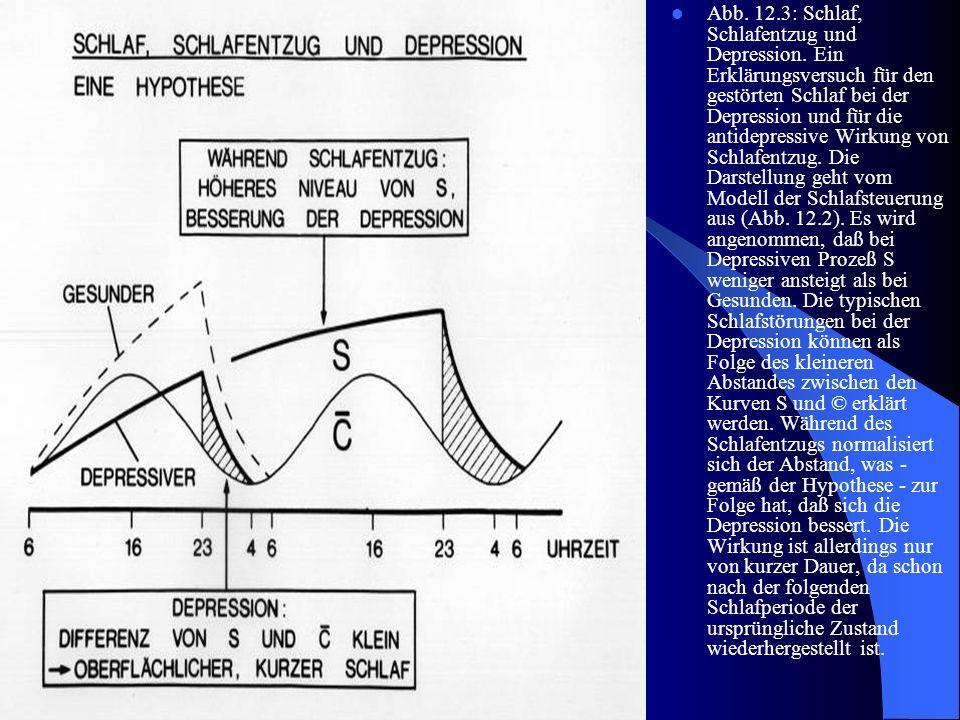 Abb. 12. 3: Schlaf, Schlafentzug und Depression