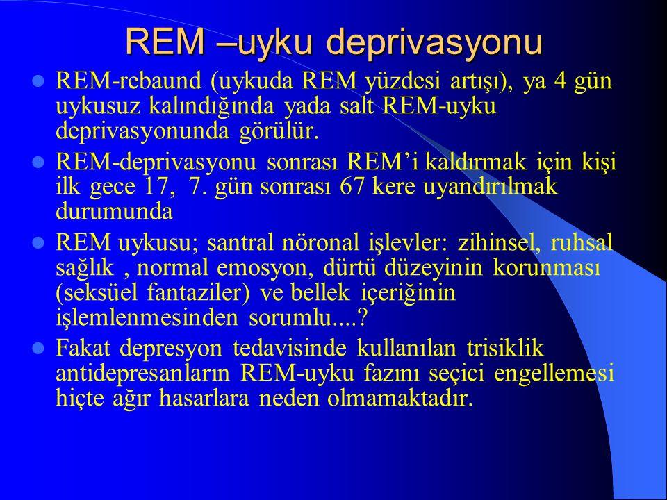 REM –uyku deprivasyonu