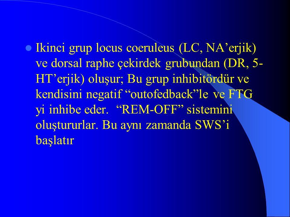 Ikinci grup locus coeruleus (LC, NA'erjik) ve dorsal raphe çekirdek grubundan (DR, 5-HT'erjik) oluşur; Bu grup inhibitördür ve kendisini negatif outofedback le ve FTG yi inhibe eder.