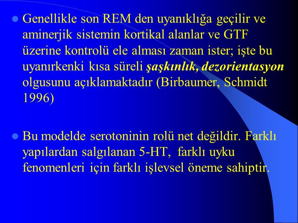 Genellikle son REM den uyanıklığa geçilir ve aminerjik sistemin kortikal alanlar ve GTF üzerine kontrolü ele alması zaman ister; işte bu uyanırkenki kısa süreli şaşkınlık, dezorientasyon olgusunu açıklamaktadır (Birbaumer, Schmidt 1996)