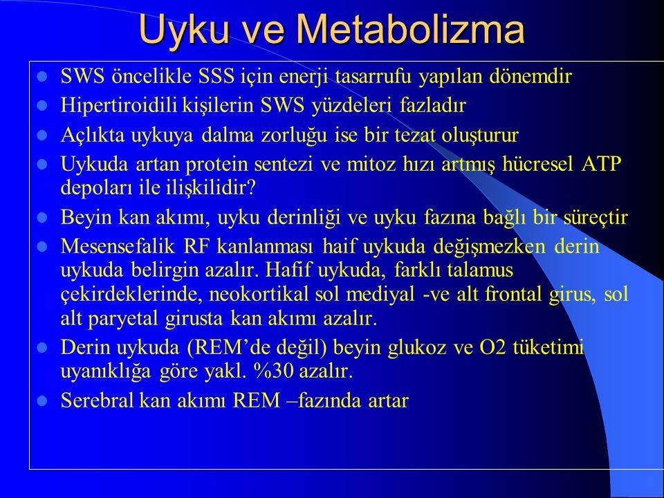 Uyku ve Metabolizma SWS öncelikle SSS için enerji tasarrufu yapılan dönemdir. Hipertiroidili kişilerin SWS yüzdeleri fazladır.