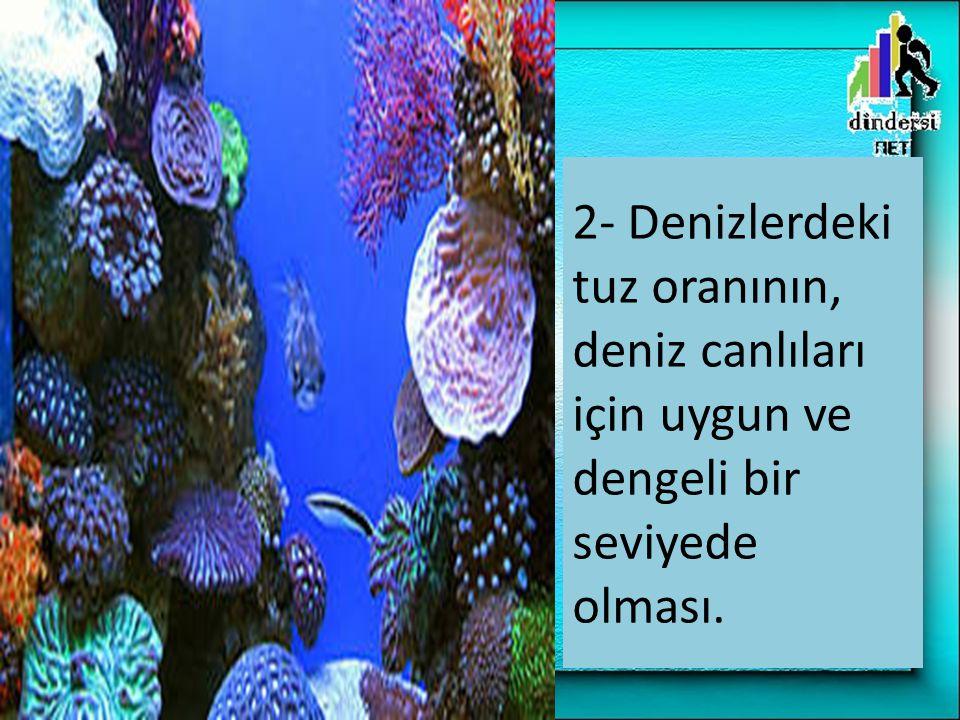 2- Denizlerdeki tuz oranının, deniz canlıları için uygun ve dengeli bir seviyede olması.