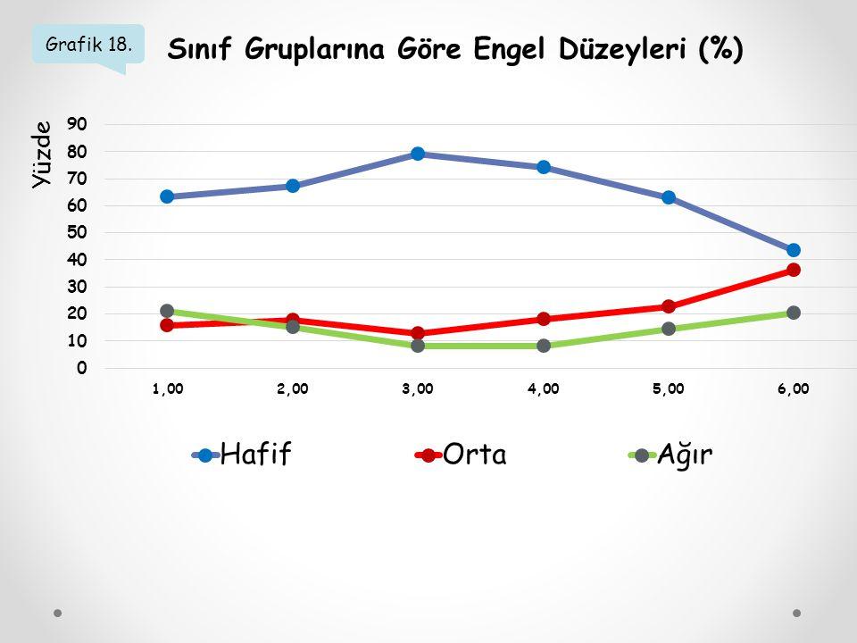 Sınıf Gruplarına Göre Engel Düzeyleri (%)