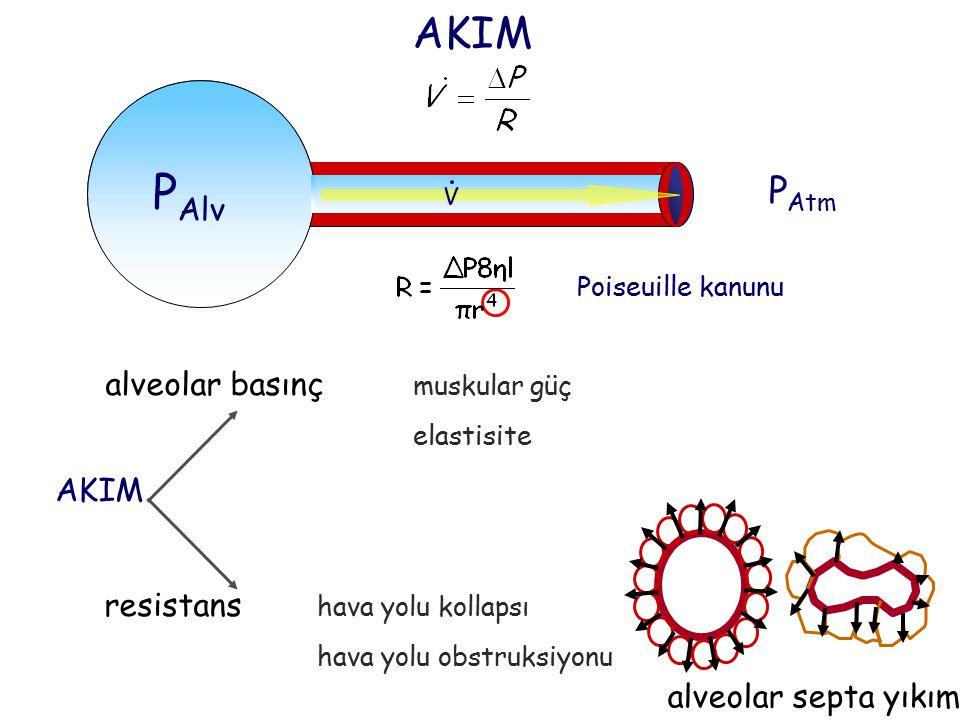 PAlv V AKIM PAtm alveolar basınç muskular güç : AKIM