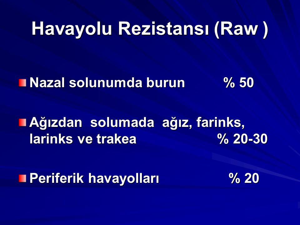 Havayolu Rezistansı (Raw )