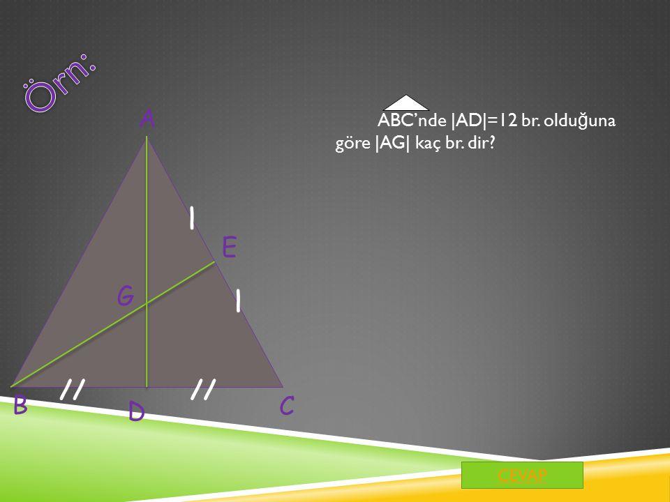 Örn: A ABC'nde |AD|=12 br. olduğuna göre |AG| kaç br. dir / E G / // // B C D CEVAP