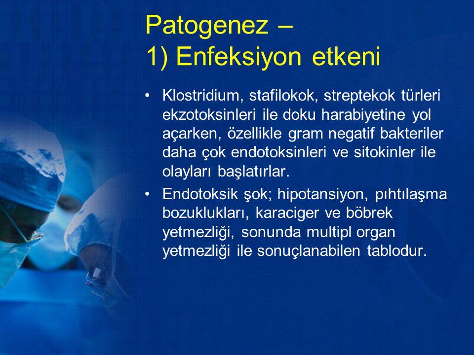 Patogenez – 1) Enfeksiyon etkeni