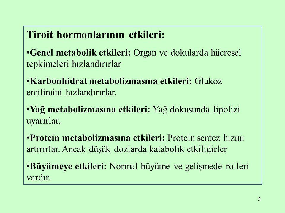 Tiroit hormonlarının etkileri: