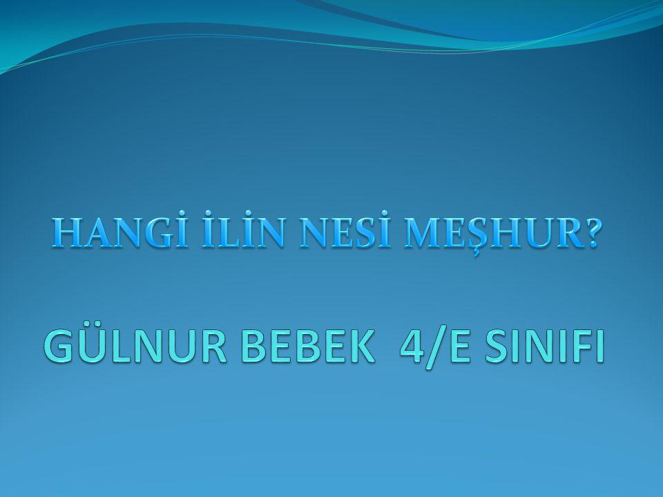 GÜLNUR BEBEK 4/E SINIFI HANGİ İLİN NESİ MEŞHUR