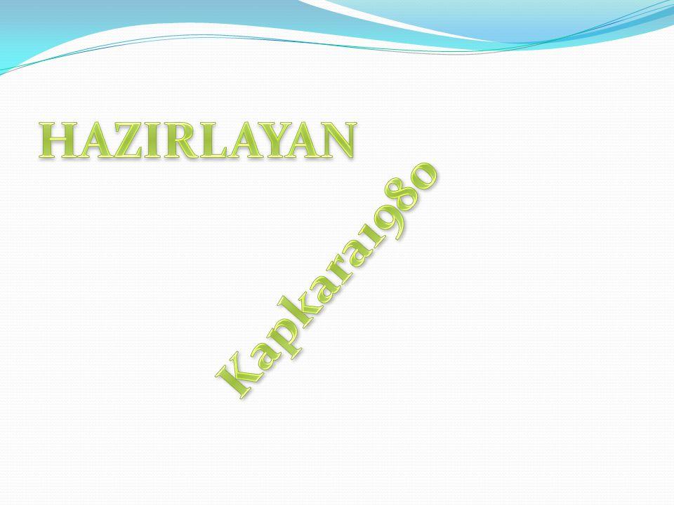 HAZIRLAYAN Kapkara1980