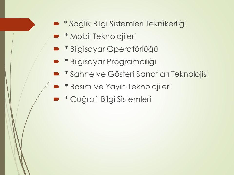 * Sağlık Bilgi Sistemleri Teknikerliği