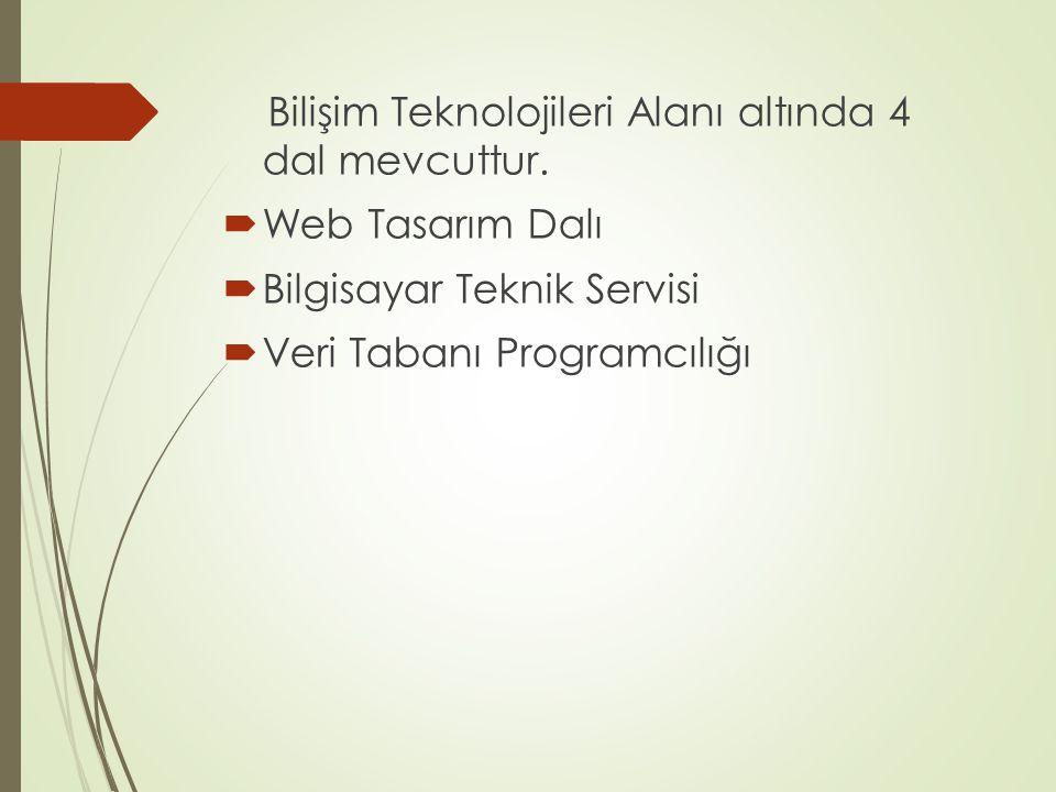 Bilişim Teknolojileri Alanı altında 4 dal mevcuttur.