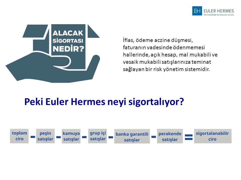 Peki Euler Hermes neyi sigortalıyor