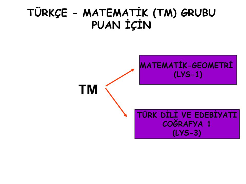 TÜRKÇE - MATEMATİK (TM) GRUBU PUAN İÇİN