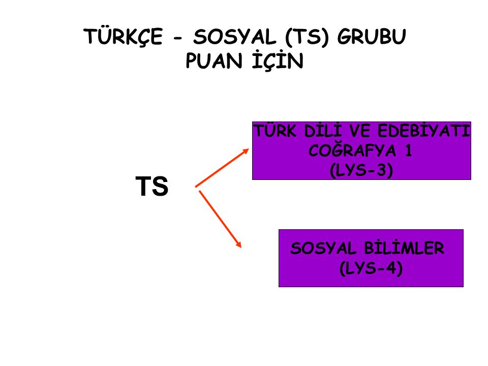 TÜRKÇE - SOSYAL (TS) GRUBU PUAN İÇİN