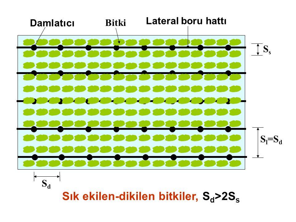 Sık ekilen-dikilen bitkiler, Sd>2Ss