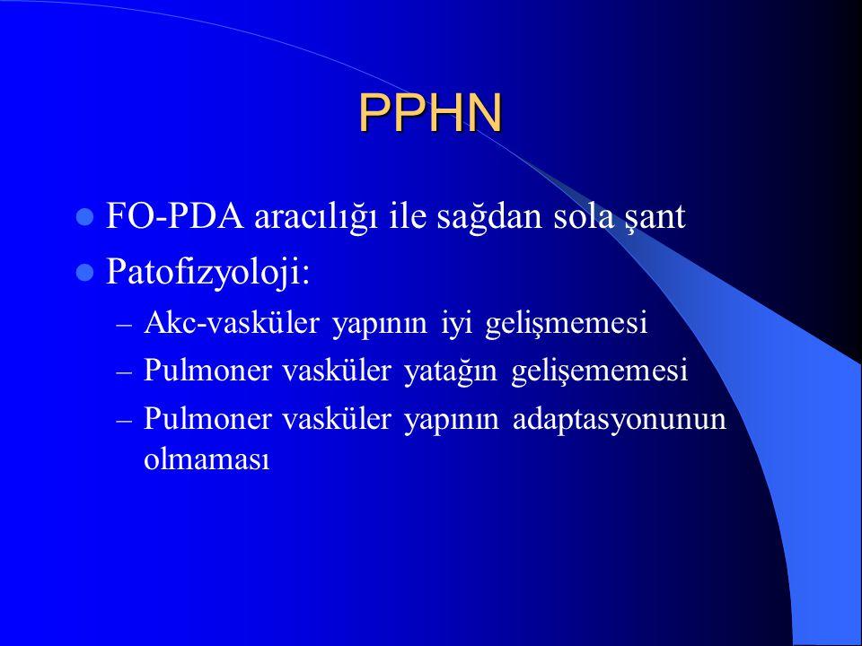PPHN FO-PDA aracılığı ile sağdan sola şant Patofizyoloji: