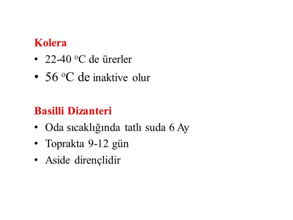 56 oC de inaktive olur Kolera 22-40 oC de ürerler Basilli Dizanteri